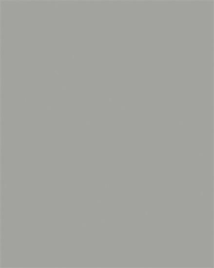 197 SU BU Chinchilla Grey