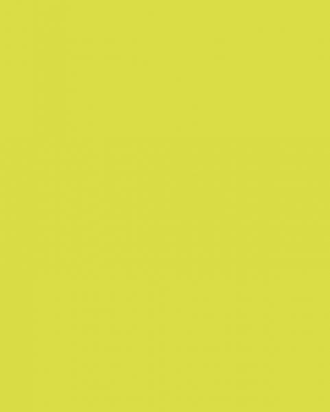 5519 BS BU Lime Grass