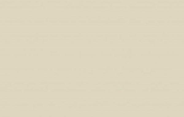 5982 BS BU Mussel