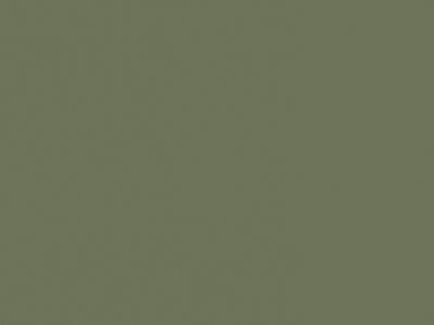 D202 PS30 zelená pesto